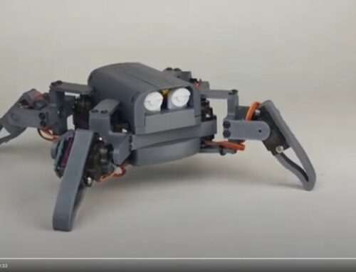 R1 Quadruped robot mg90s video test
